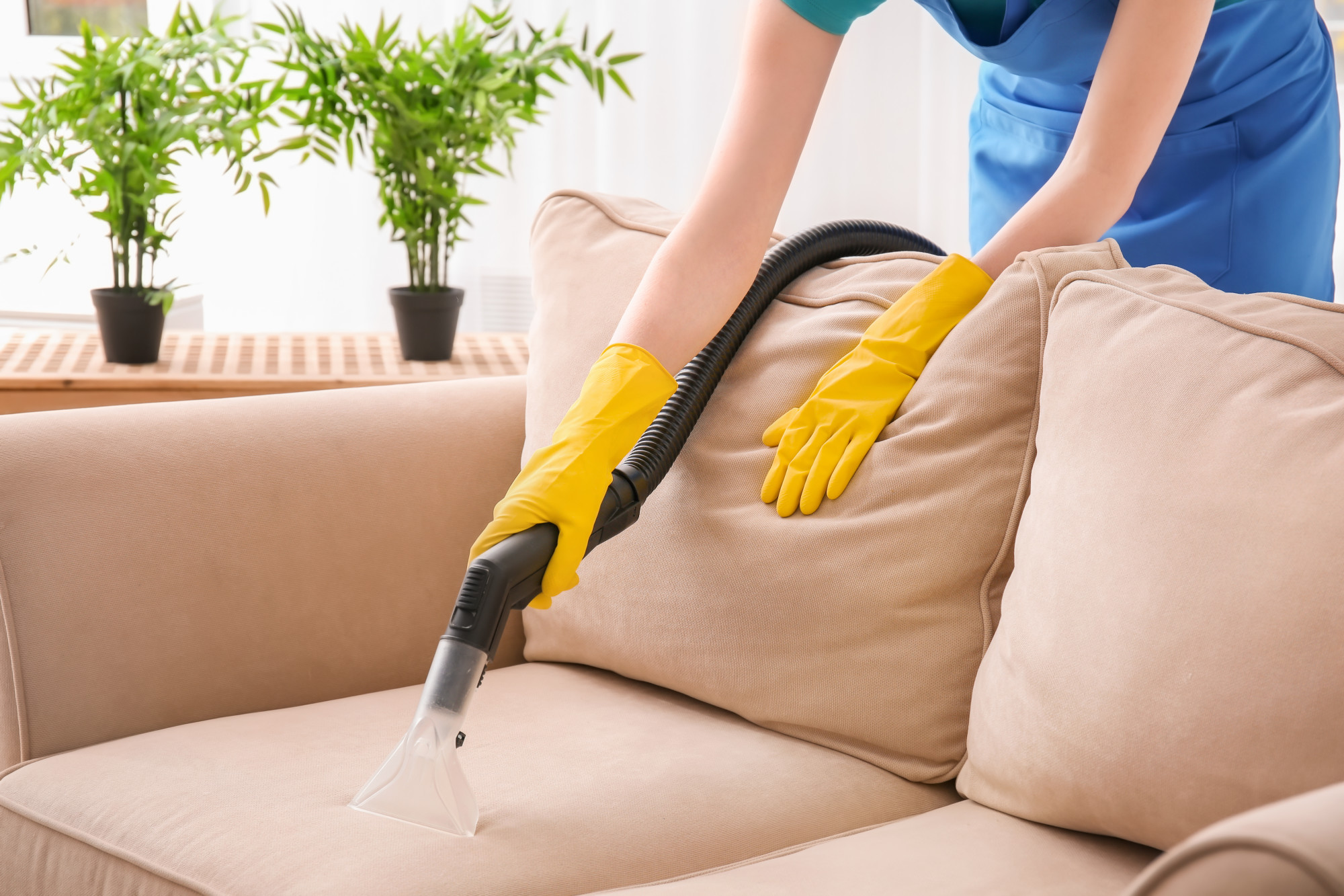 upholstery cleaning palmdale